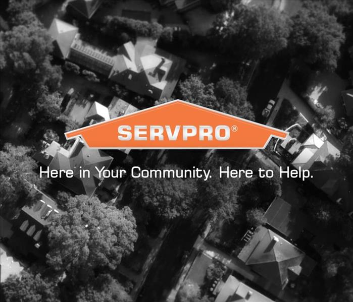 Aerial view of trees. Image is black and white. Orange house logo in the foreground with the words SERVPRO.